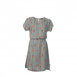 Froy & Dind Dress Amina Lemons
